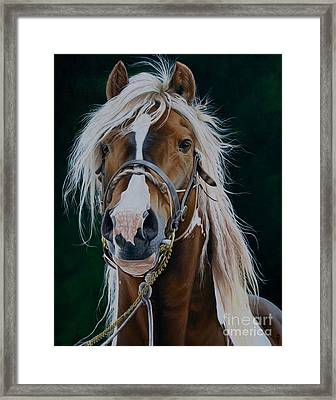 Vanner Spirit-spancil Hill Framed Print by Pauline Sharp