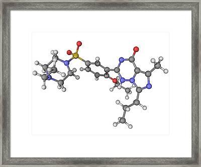 Vardenafil Erectile Dysfunction Drug Framed Print by Laguna Design