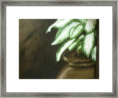 Variagated Framed Print by Carol Northington