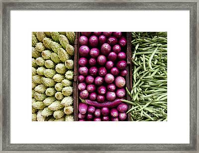 Vegetable Triptych Framed Print by Jane Rix