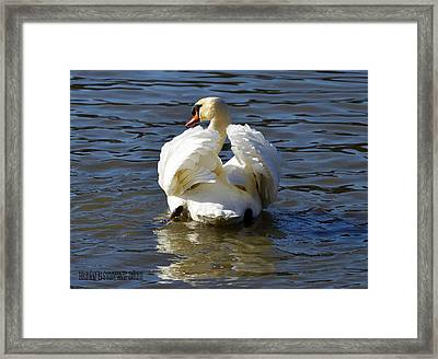 Framed Print featuring the photograph Veiw From Behind by Brian Stevens