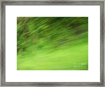 Verde - Ile De La Reunion Framed Print by Francoise Leandre