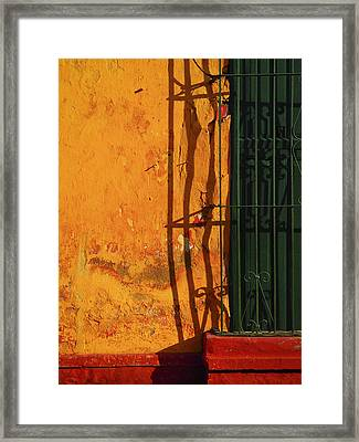 Verde Jaula Framed Print by Skip Hunt