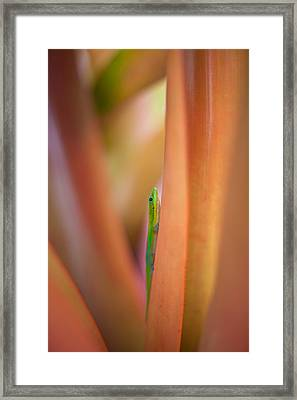 Vertical Framed Print by Mike Reid