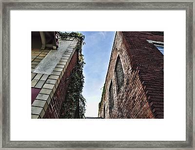 Vertigo Framed Print by Jan Amiss Photography