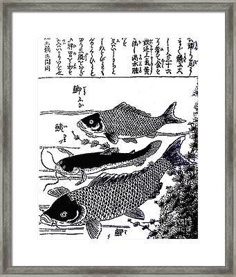 Very Old Chinese Ink Drawing Framed Print by Merton Allen