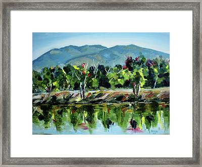 Veterans Park Pond Framed Print