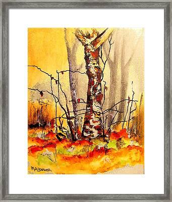 Vibrant Birch Framed Print by Mary ann Barker