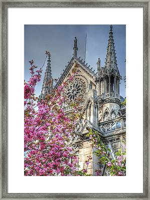 Vibrant Cathedral Framed Print by Jennifer Ancker