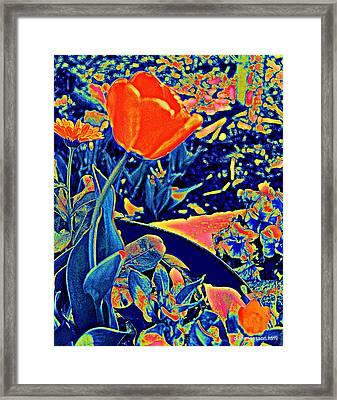Vibrating Spring Framed Print