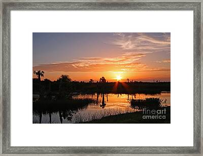 Viera Wetlands Sunset Framed Print by Jennifer Zelik