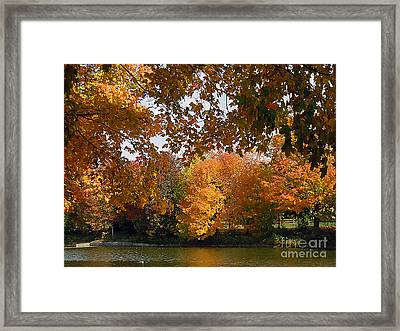 View Across The River Framed Print