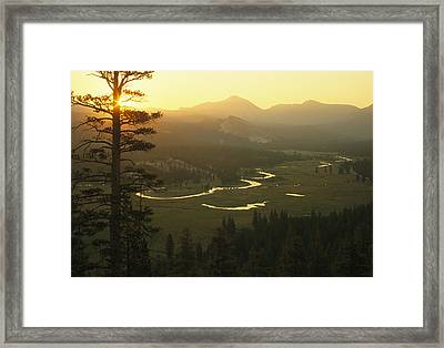 View At Dawn Of The Tuolumne River Framed Print by Phil Schermeister