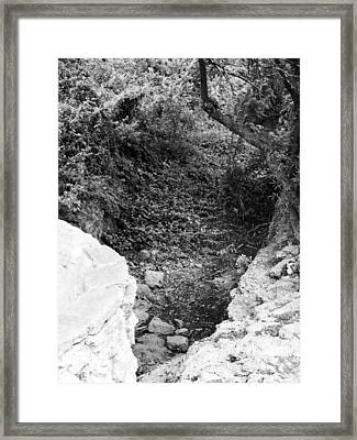 View From A Desert Walking Trail Framed Print