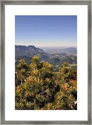Framed Print featuring the photograph View From Eagles Nest by Rick Frost