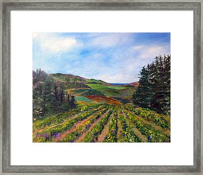 View From Soquel Vineyards Framed Print by Annette Dion McGowan