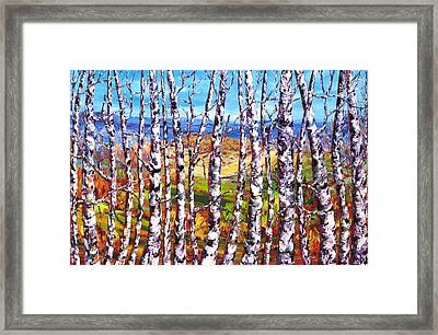View From The Hill Gatineau Framed Print by Margaret Chwialkowska