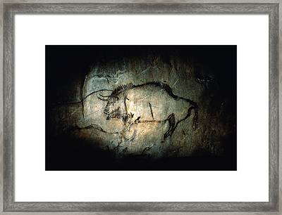 View Of A Bison Painted Approximately Framed Print by Sisse Brimberg