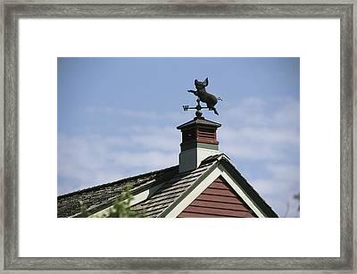 View Of A Flying Pig Weathervane Framed Print by Darlyne A. Murawski