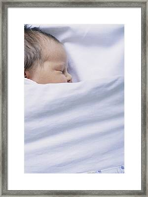 View Of A Premature Baby Asleep In A Cot Framed Print by Mauro Fermariello