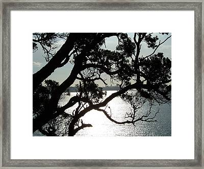 Framed Print featuring the photograph View Of Auckland by Peter Mooyman