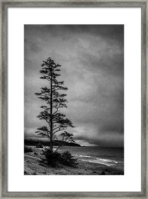 View Of Cannon Beach From Ecola State Park II Framed Print by David Patterson