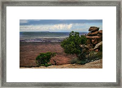 View Of Canyonland Framed Print