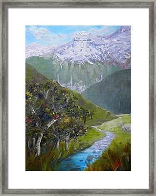 View Of Chinamans Bluff Nz Framed Print
