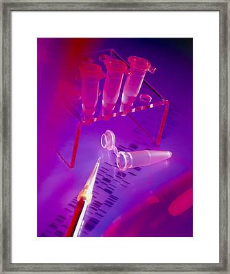 View Of Microtubes, Pipette & Dna Sequence Framed Print by Tek Image