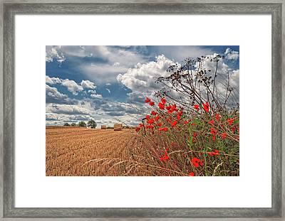 View Of Summer Landscape Framed Print