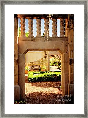 View Of The Garden Framed Print by Tamyra Ayles