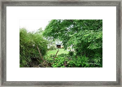 View Through A Garden Framed Print