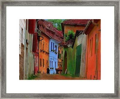 Village Viuw Framed Print by Miu Dan Popa