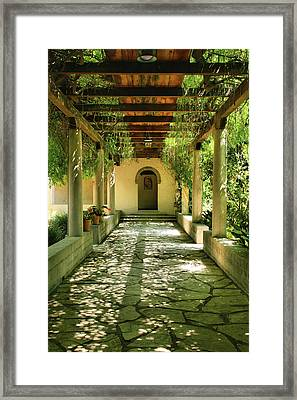 Vine Covered Walkway Framed Print by Steven Ainsworth