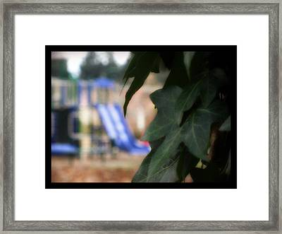 Vines And Playground Framed Print by Lee Yang
