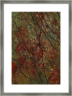 Vines And Twines  Framed Print by Jerry Cordeiro
