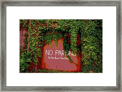 Framed Print featuring the photograph Vines Blocking The Door by Paul Mashburn