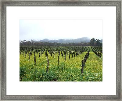 Vines Of Our Times Framed Print