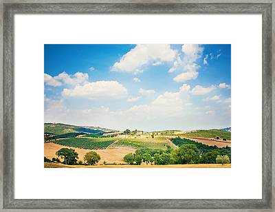 Vineyard Framed Print by Just a click