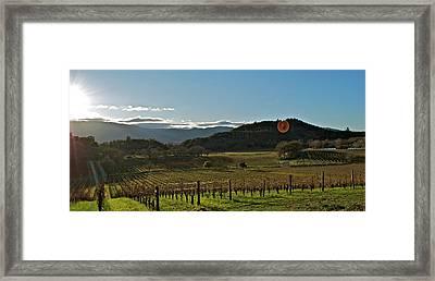 Vineyard Framed Print by Lori Leigh