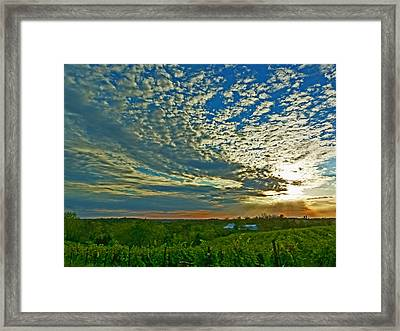 Framed Print featuring the photograph Vineyard Sunset I by William Fields