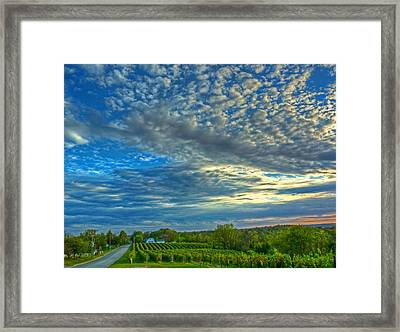 Framed Print featuring the photograph Vineyard Sunset II by William Fields