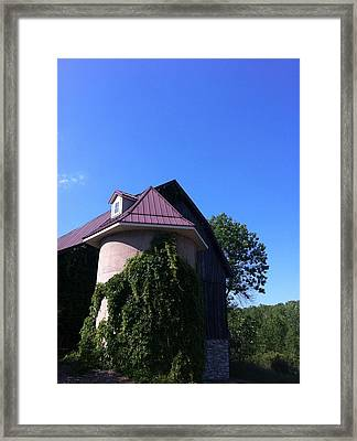 Framed Print featuring the photograph Vineyard by Tiffany Erdman