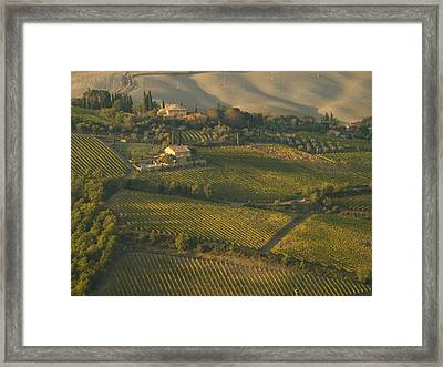 Vineyards Surround Villas Framed Print by Michael S. Lewis