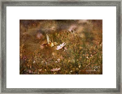Vintage Beauty In Nature  Framed Print by Susan Gary