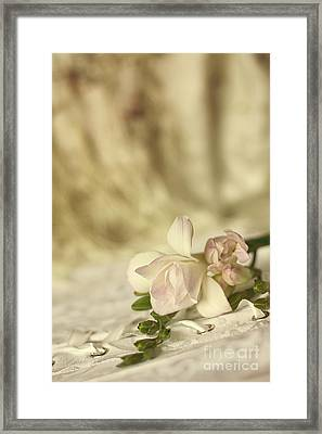 Vintage Corset With Flowers Framed Print by Ethiriel  Photography