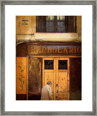 Vintage Facade In Madrid Framed Print by Perry Van Munster