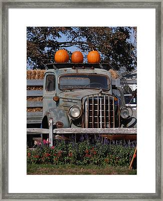 Vintage Harvest Framed Print by Kimberly Perry