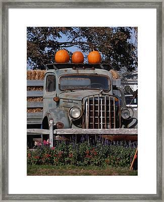 Vintage Harvest Framed Print
