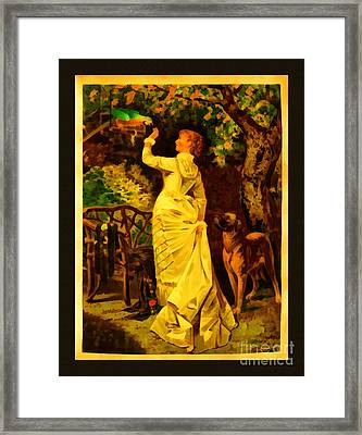 Vintage Reproduction Of Woman Feeding Parrot Framed Print by Anne Kitzman